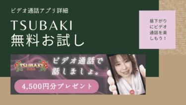 TSUBAKI(ツバキ)の口コミ評価  人妻熟女アプリ詳細